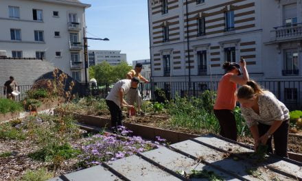 Atelier jardin à la Mce – mardi 14 mars