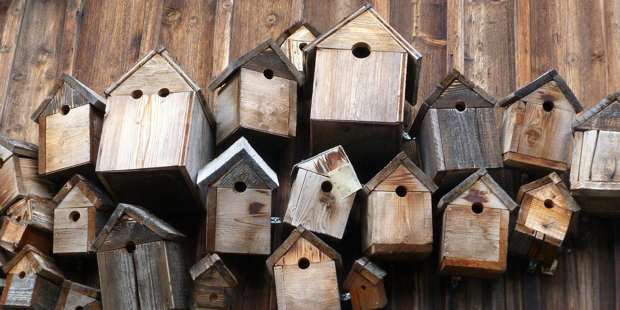 Nichoirs citoyens – Maison de quartier Ste Thérèse jusqu'au 2 décembre