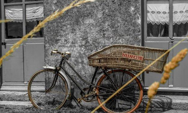 Drôles de vélos ! (2014)