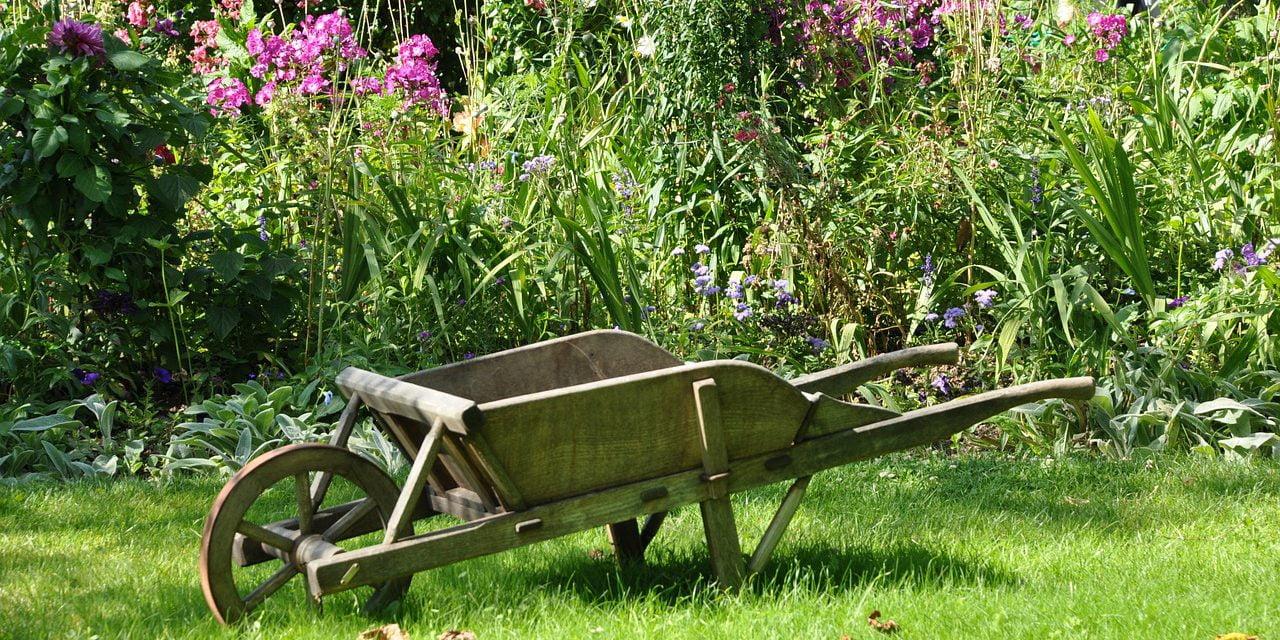 Jardiner au naturel : vous êtes une commune ? Les associations vous aident