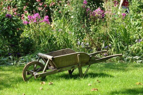 Societe-d-horticulture_Jardin