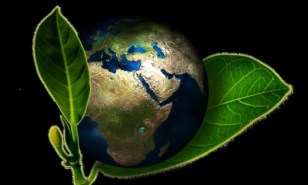 Histoire de la protection de l'environnement -jeudi 16 mars