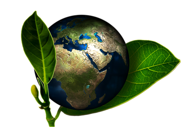 Comment protéger l'environnement demain ? : jeudi 18 mai