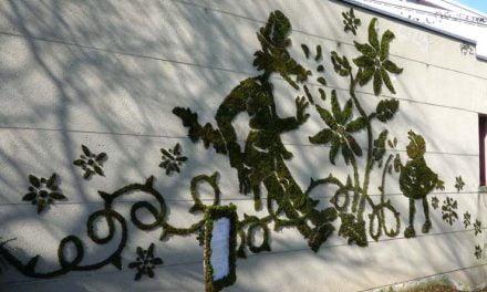 Atelier trucs et astuces avec Vert le Jardin – mercredi 5 avril