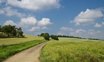 Séminaire Ecobordure «Diagnostiquer les bordures de champs dans une démarche agro-écologique» – mardi 10 octobre 2017