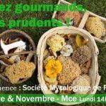 Champignons : profitez des animations de la Société Mycologique de Rennes en Octobre