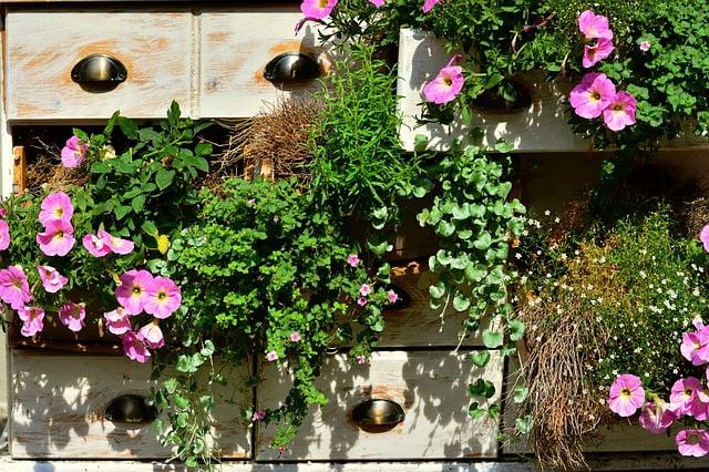 Balcon-fleurs