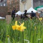 Fête des jardiniers et Fête du printemps : près de 900 curieux ont réveillé leur goût du jardin !