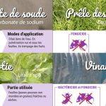 Fiches pratiques au jardin, les substances de bases