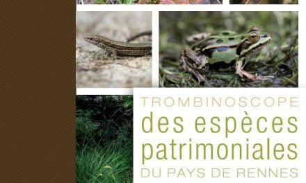 Biodiversité du Pays de Rennes : trombinoscope des espèces patrimoniales