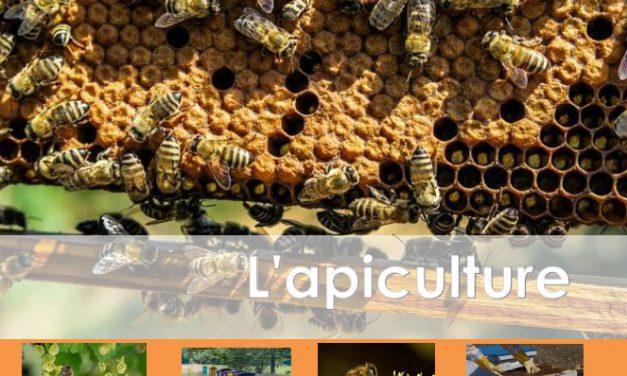 Sélection d'ouvrages sur l'apiculture (2018)
