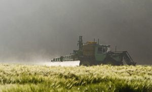 impact_pesticides