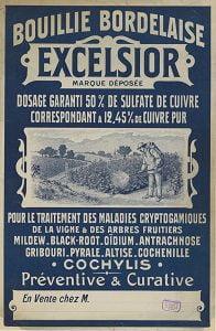 potager_Bouillie_bordelaise1903