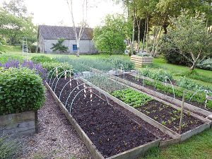potager_emplacement