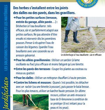 Terrasses, allées, cours – jardifiche n°2 (2019)