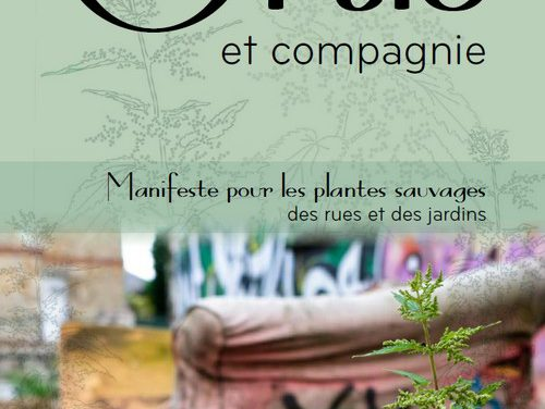 Ortie et compagnie (2019)