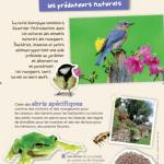 Kit de 6 affiches Jardiner au naturel