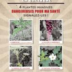 """Affiche """"4 plantes invasives dangereuses pour ma santé"""""""