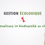 """Clip vidéo """"Gestion écologique : Accueillons la biodiversité en ville"""""""