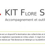 KIT Flore Spontanée