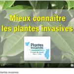 """Vidéo """"Mieux connaître les plantes invasives"""""""