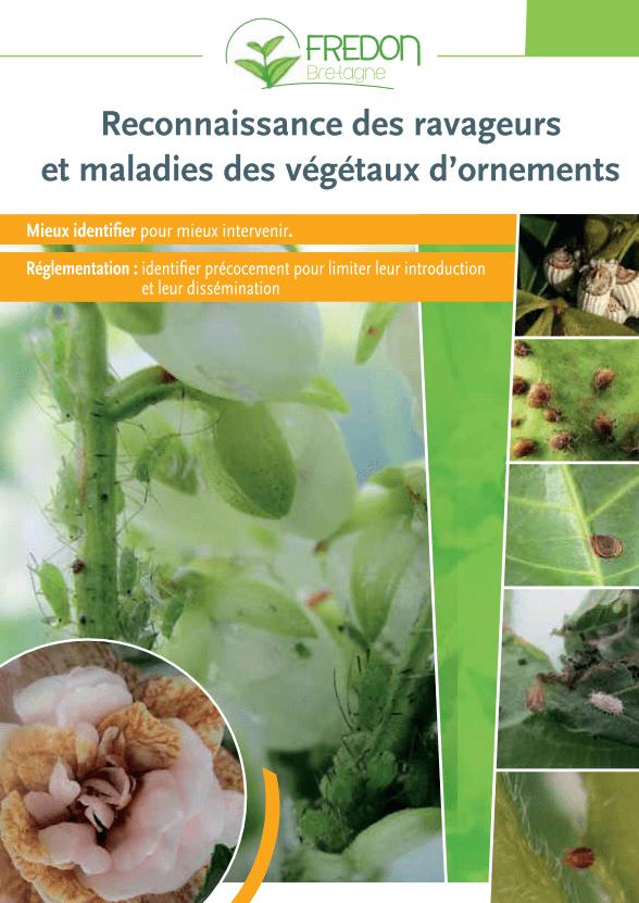 Guide de reconnaissance des organismes nuisibles des végétaux d'ornement