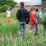 Bienvenue dans mon jardin en Bretagne - photo1