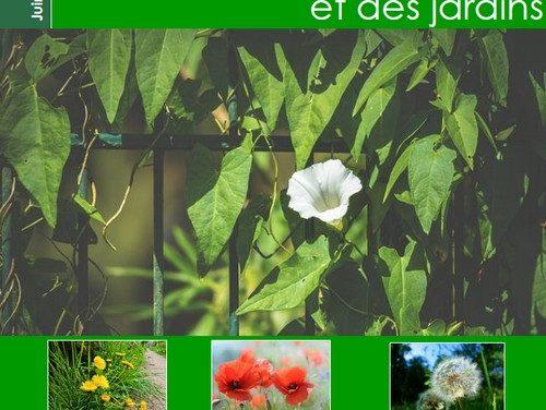 Sélection d'ouvrages sur la flore sauvage des rues et des jardins (2019)