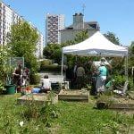 Jardins partagés : une formation pour les créer et animer avec Vert le jardin
