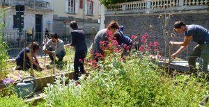 jardin-partage