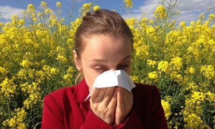 Les pollens : quand la pollinisation nous rend malade !