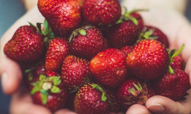 L'alimentation autrement – #12 Merci Babeth