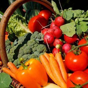 alimentation-nutrition-bien-manger