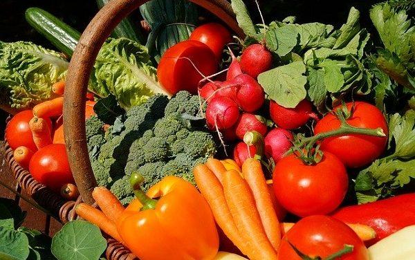 Alimentation et nutrition : nouvelles fiches d'information par la Mce