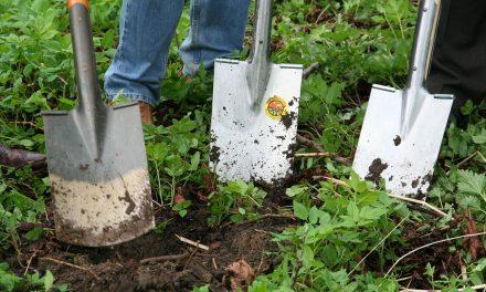 Association des Jardins familiaux, une nouvelle association à la Mce !