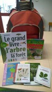 arbres_remarquables_bretagne_kit