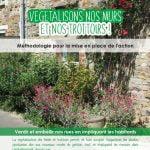 guide methodologie_vegetalisons_juin2020
