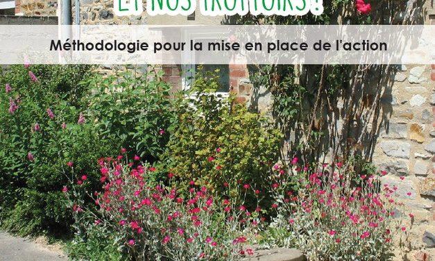Végétalisons nos murs et nos trottoirs (juin 2020)