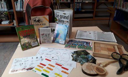 Remarquons les arbres : une malle pédagogique sur les arbres et la forêt