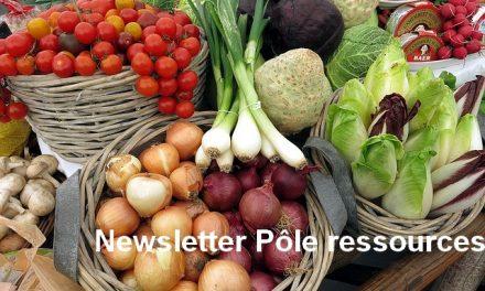 Transition alimentaire : une lettre d'information à consommer sans modération !