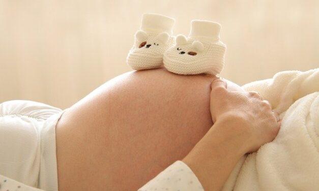 Femmes enceintes, environnement et santé : une formation pour les professionnels de santé