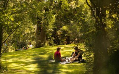 Des îlots de fraîcheur à Rennes: les connaissez-vous?